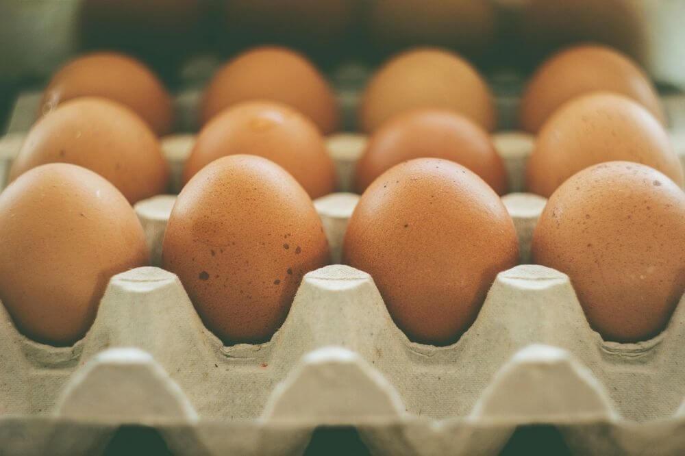 8 فوائد للأكل الغني بالبروتين